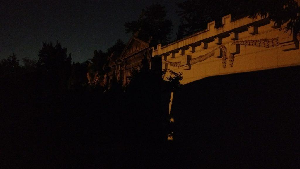 nocturna-1